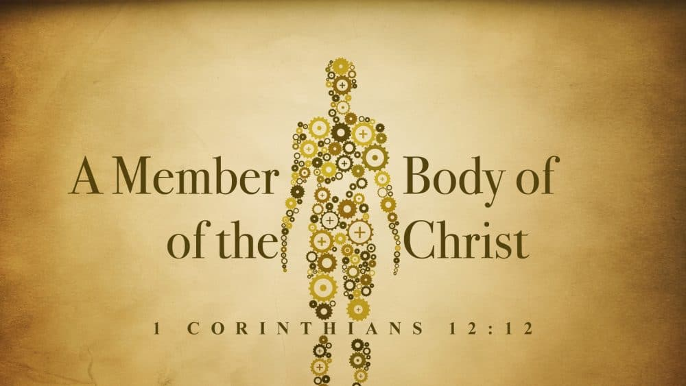 A Member of the Body of Christ Image