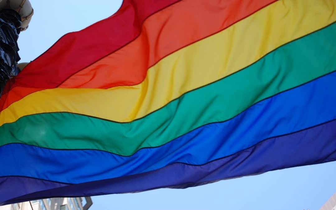 The High Court Still Condemns Sodomy