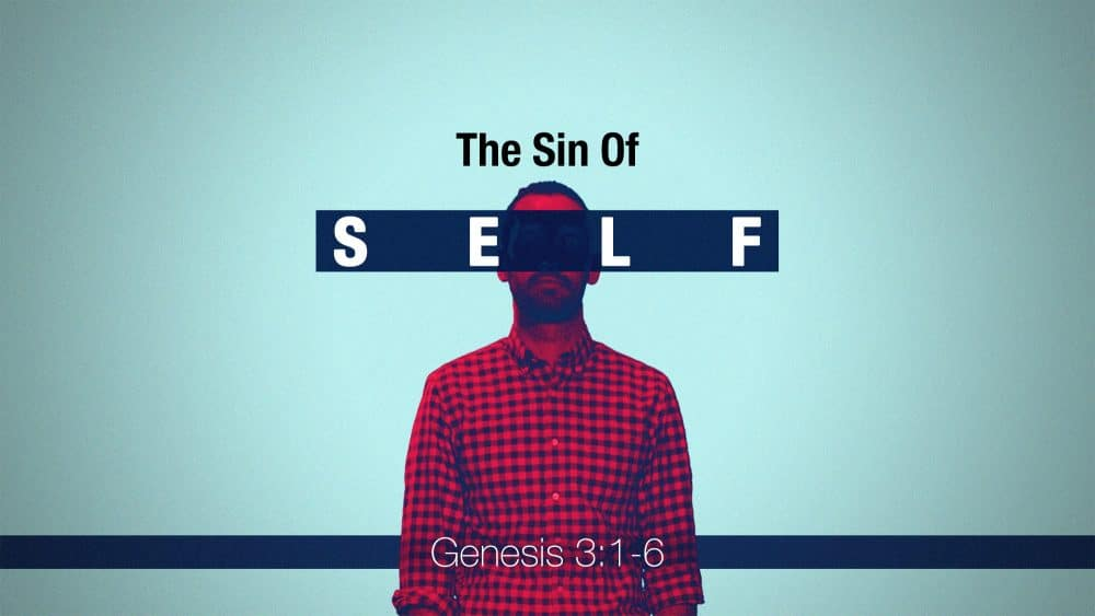 The Sin of Self Image