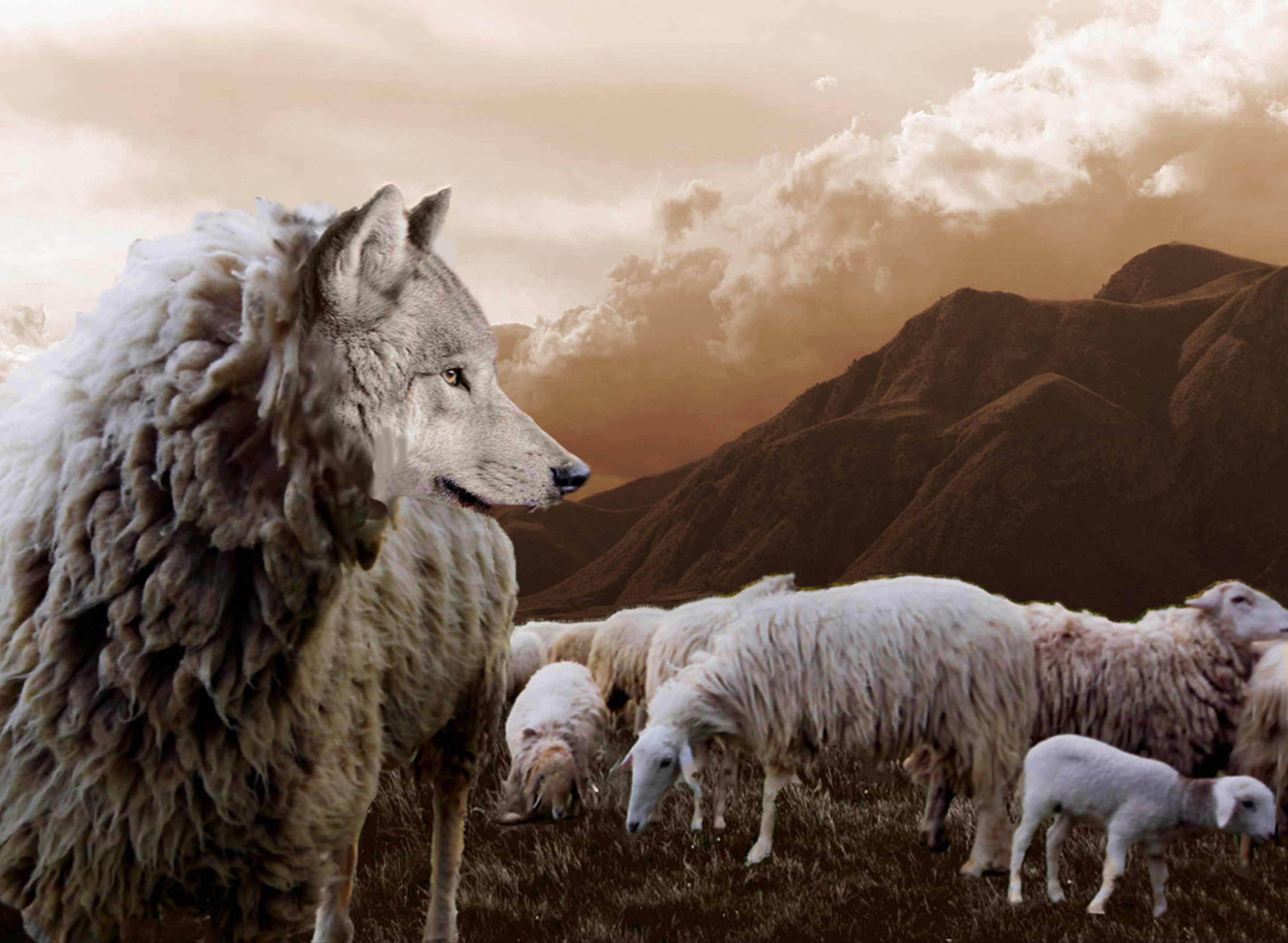 wolf in sheep's clothing church of Christ lufkin tx