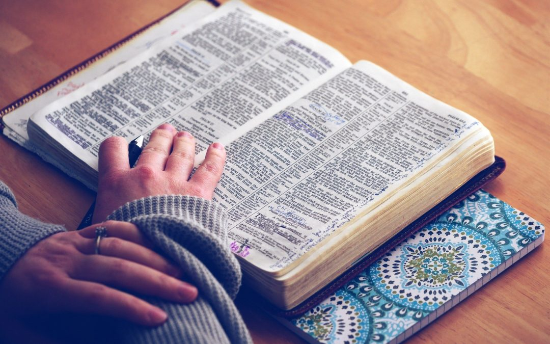 Does Faith Alone Save You?