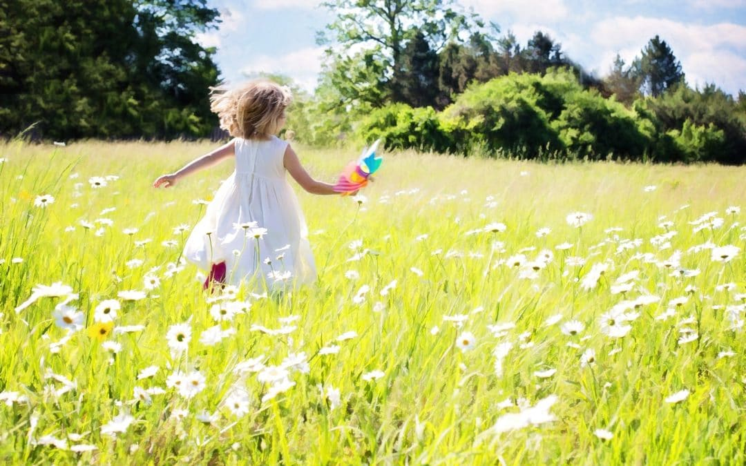 Joy in Christ: Maintain a Clean Conscience