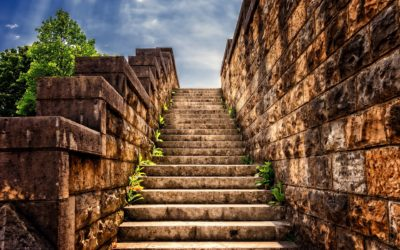 """What Those """"Steps"""" Mean"""