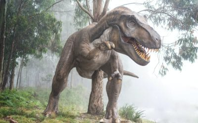 """Is Anything Really """"Prehistoric""""?"""