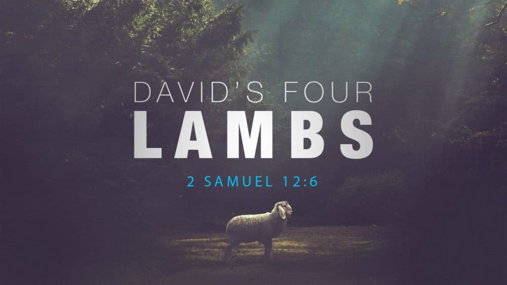 David's Four Lambs Image